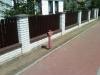 img01532-20120505-1357